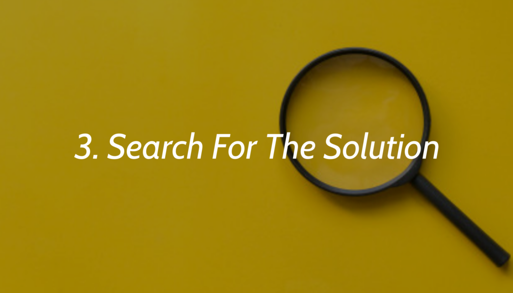 3. Search For The Solution