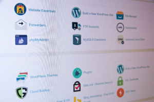 YoPrint should you buy domain names from web hosting companies